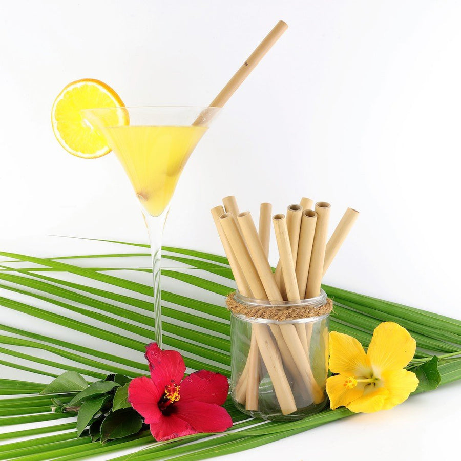 Reusable bamboo drinking straws - OZBEACHES