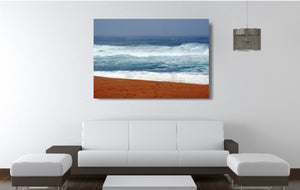 An acrylic print of seagulls against vibrant colours at Bingie Beach NSW hanging in a lounge room setting