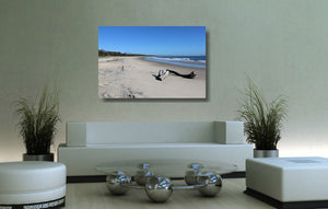 An acrylic print of Shark Bay at Illuka in NSW hanging in a lounge room setting