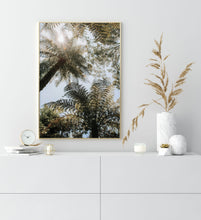 Load image into Gallery viewer, Palm Trees IV