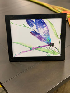 Dragonfly framed picture