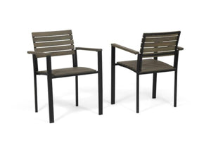 Alberta Outdoor Wood and Iron Dining Chairs Set of 2 Gray/Black(772