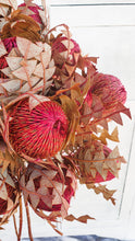 Load image into Gallery viewer, AUSTRALIAN DRIED BANKSIA- WATERMELLON