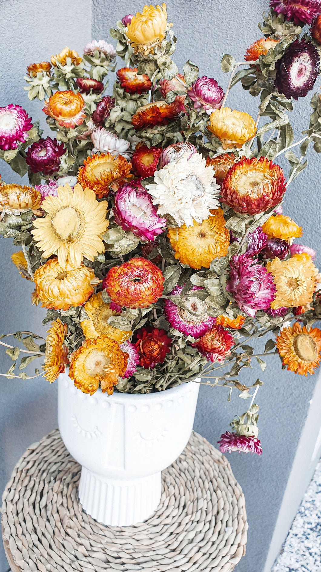 DRIED PAPER DAISIES- STEM