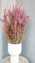 Load image into Gallery viewer, NATURAL DRIED TITREE- PINK