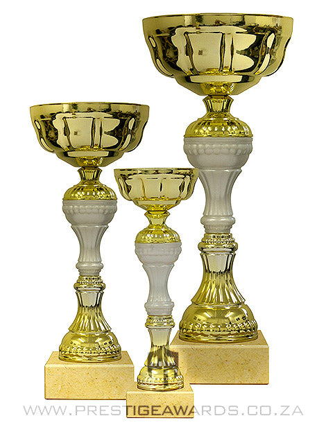 Gold and White Value trophy T0499 Range