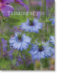 Encouragement Thinking of You (small size)