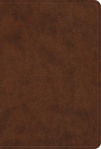 ESV Large Print Compact brown