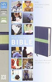 NIV Thinline Bible, Imitation Leather, Blue/Green, Red Letter Edition
