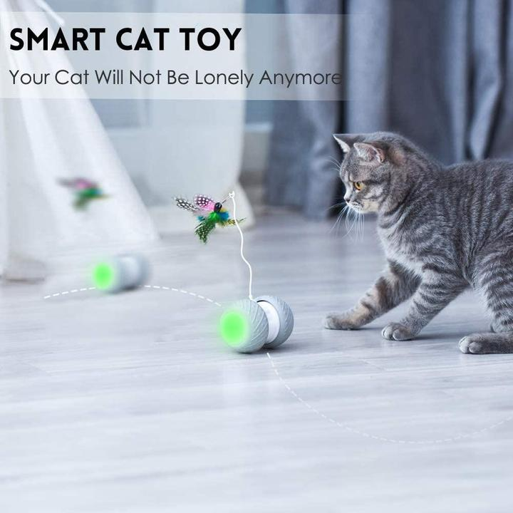CatBot Interactive Toy- Robotic Teaser Cat Toy