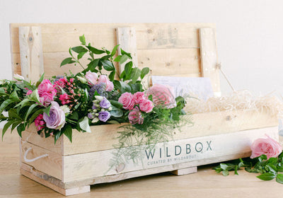 Wildbox - Coming Autumn 2020!