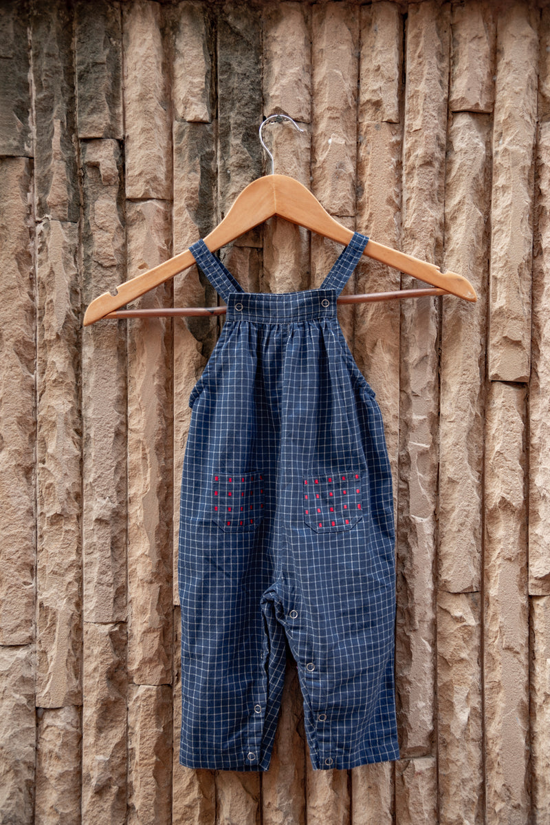 Indigo Gingham Embroidered Dungarees