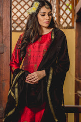 Ruby Laal Aari Raw Silk Kurta