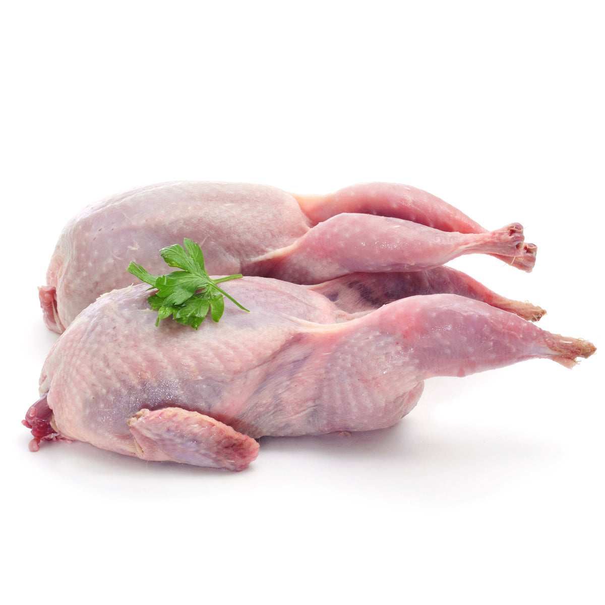 QUAILS FROZEN (2 pcs)