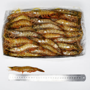 QUEEN BANANA PRAWNS (B4) - 2kg