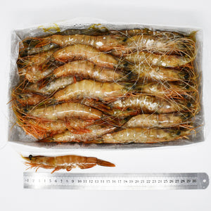 SPECIAL QUEEN  BANANA PRAWNS (B3) - 2kg