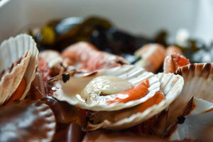 King of Seafood Hamper