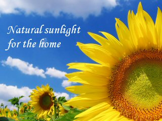 Natural sunlight for the home