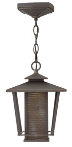 Theo 1-Light Outdoor Hanging Light in Oil Rubbed Bronze