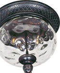 Maxim Carriage House Vivex 2-Light Outdoor Ceiling Mount Oriental Bronze 40429WGOB