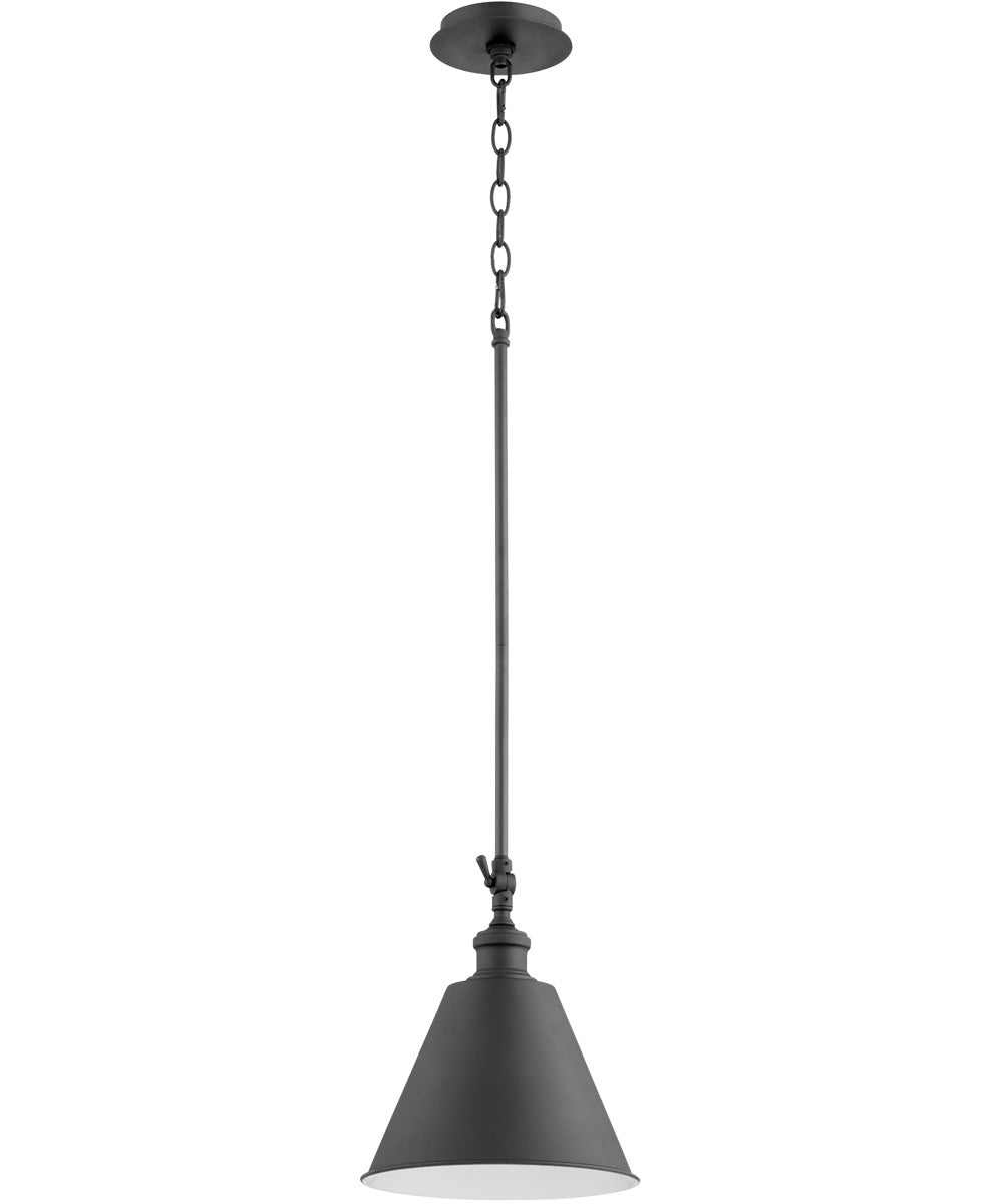 "10""W 1-light Pendant Noir"