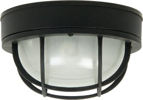All Outdoor Ceiling Lights