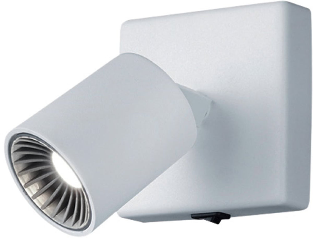 Cayman LED Wall/Ceiling Light White