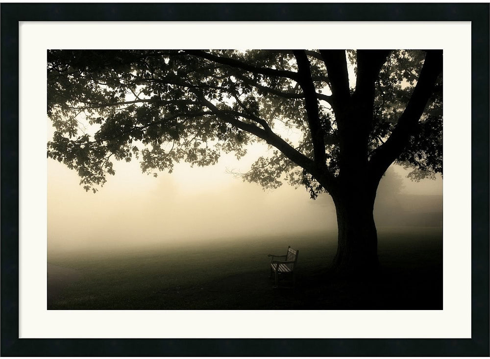 "36x26"" Andy Magee Shenandoah Framed Print"