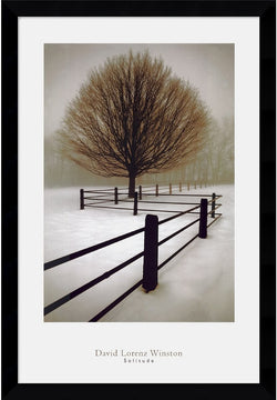 "39""H x 27""W David Lorenz Winston Solitude Framed Print"
