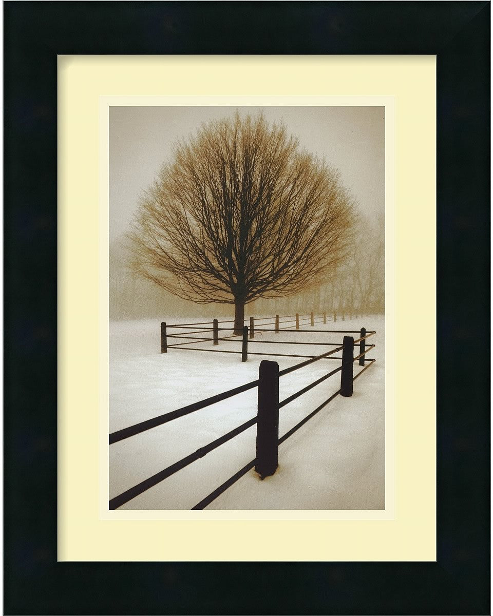"12x15"" David Lorenz Winston Solitude Framed Print"