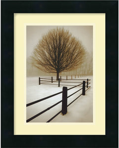Amanti Art David Lorenz Winston Solitude Framed Print AA01094