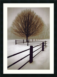 "25x33"" David Lorenz Winston Solitude Framed Print"