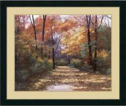 Amanti Art Diane Romanello Autumn Road Framed Print AA01243