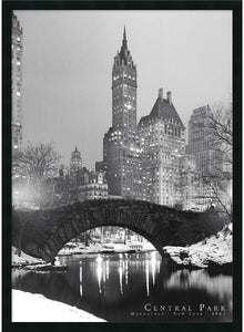 Amanti Art Central Park Framed Print AA01308