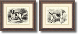 English Setter and Foxhound Set of 2 Framed Art Print Distressed Wood