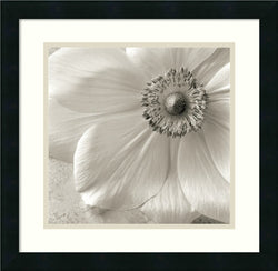 Sondra Wampler Poppy Study II Framed Art Print Satin Black