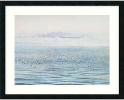 Amanti Art Migrating Ducks Framed Print Satin Black AA574572