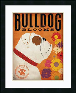 Bulldog Blooms Framed Print by Stephen Fowler Satin Black