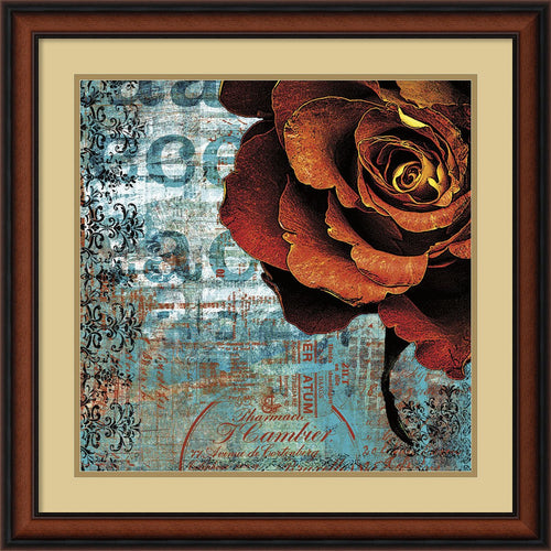 Graffiti Rose Framed Print by Christina Lazar Schuler Walnut
