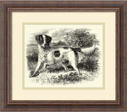 Amanti Art English Setter Framed Art Print Distressed Wood AA977534