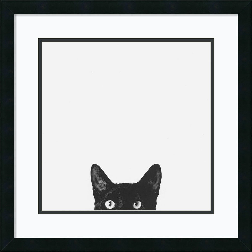 Jon Bertelli Curiosity Framed Art Print Satin Black
