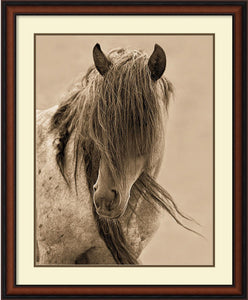Lisa Dearing Freedom Framed Art Print Pure White