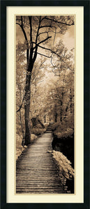 Amanti Art Ily Szilagyi A Quiet Stroll I Framed Art Print Satin Black AA982691