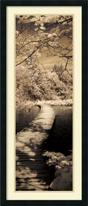 Ily Szilagyi A Quiet Stroll II Framed Art Print Satin Black