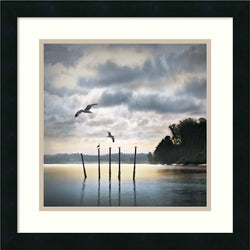 Amanti Art William Vanscoy Circling Skies Framed Art Print Satin Black AA986793
