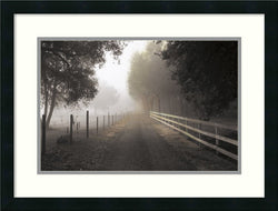 Amanti Art P.T. Turk The Journey Framed Art Print Satin Black AA986942