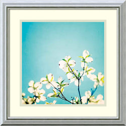 Amanti Art Carolyn Cochrane Skies of Blue Framed Art Print White/Silver Mist AA987628