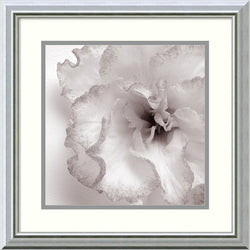 JK Driggs Blossom [Two] Framed Art Print Polar White/Harbor
