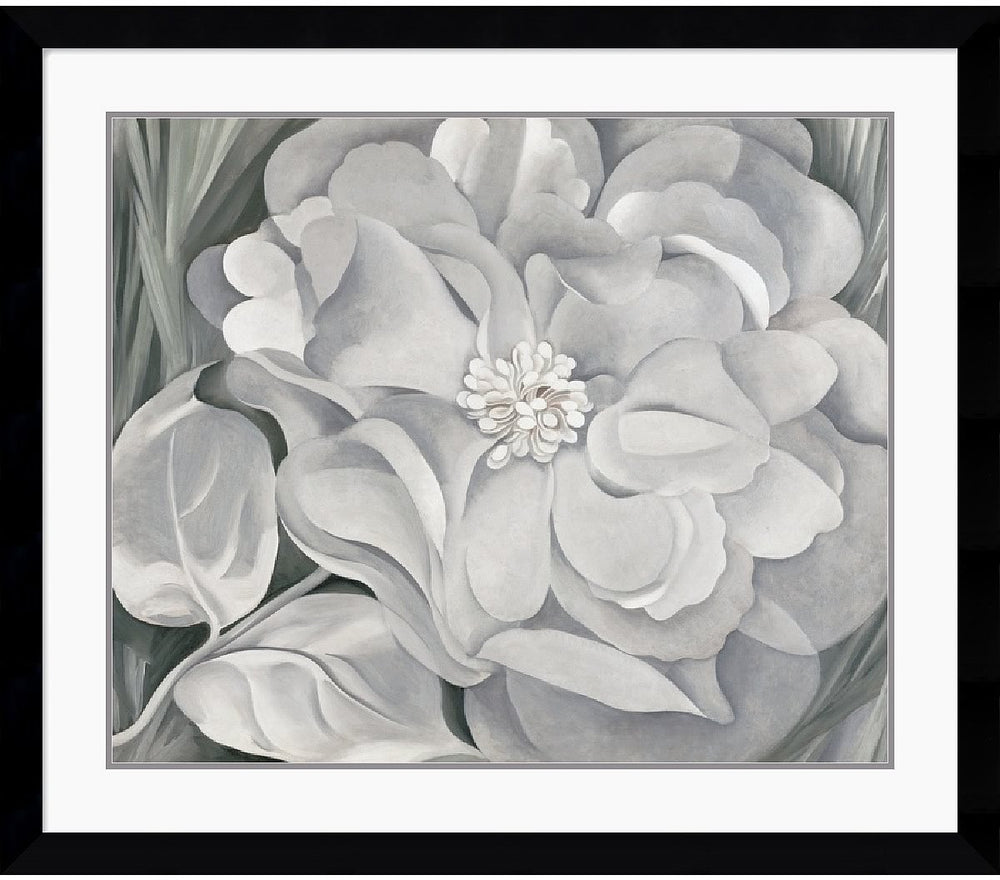 "34""H x 39""W Georgia OKeeffe The White Calico Flower 1931 Framed Print"