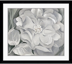 Amanti Art Georgia OKeeffe The White Calico Flower 1931 Framed Print AA113592